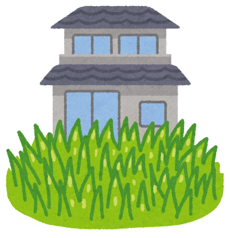 花粉症の原因のひとつ、雑草について
